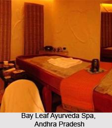 Ayurveda Spa Resorts India