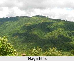 Naga Hills, Kohima, Nagaland