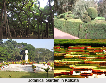 Botanical Gardens, Kolkata