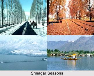 Srinagar,Jammu & Kashmir