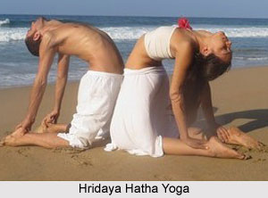 Human Body and Hatha Yoga