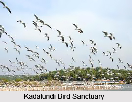 Indian Wildlife Sanctuaries