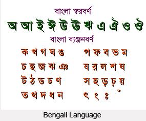 Origin of Indian Languages