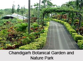 Botanical Garden and Nature Park, Chandigarh