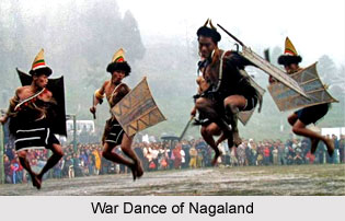 Nagaland, Indian State