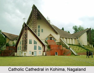Nagaland, Indian State