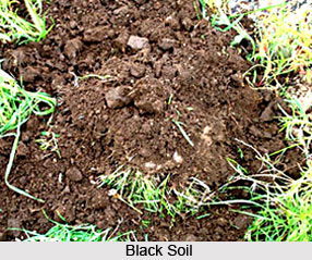 Types of soil for Different types of soil wikipedia