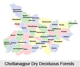 Chottanagpur Dry Deciduous Forests in India