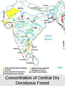 Central Deccan Plateau Dry Deciduous Forests in India