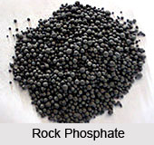 Indian Phosphorite Mines