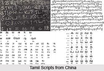 Development of Tamil Scripts, Tamil Language