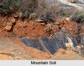 Mountain soil in india for Different types of soil wikipedia