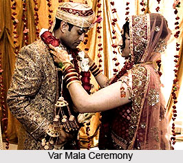 Var Mala Ceremony, Indian Wedding