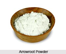 how to make arrowroot powder in hindi