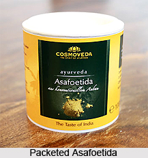 Asafoetida, Indian Spice