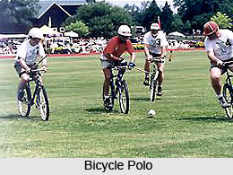 Types of Polo