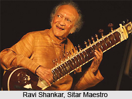 Indian Classical Instrumentalists