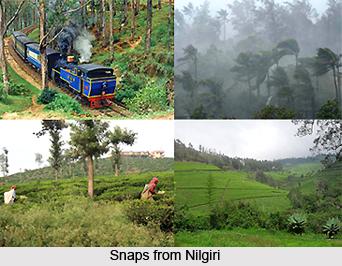 Nilgiris District