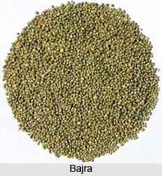 Sprouts in Naturopathy
