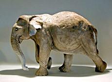external image ElephantSculpture_4645.jpg