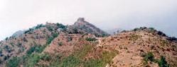 Tiun Fort