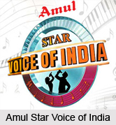 Amul Star Voice of India, Indian Reality Show