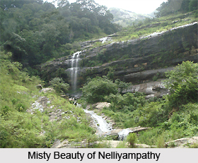 Nelliyampathy , Hill station in Kerala