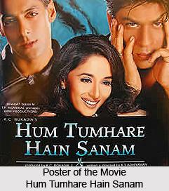 Hum Tumhare Hain Sanam,   Indian film