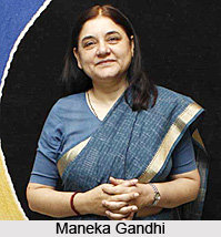 Maneka Gandhi, Indian Union Cabinet Minister