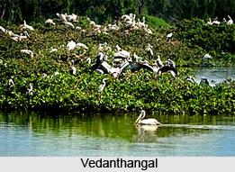Vedanthangal , Chennai