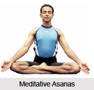 Types of Yoga Asanas