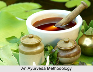 Western Thoughts on Ayurveda