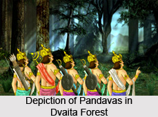 Dvaita Forest, Indian Forest
