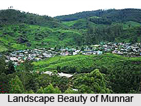 Visiting Places In and Around Munnar