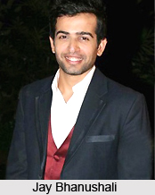 Jay Bhanushali, Indian TV Actor