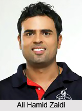 Ali Hamid Zaidi, Uttar Pradesh Cricketer
