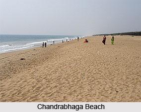 Chandrabhaga Beach, Odisha