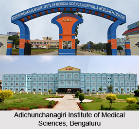 Adichunchanagiri Institute of Medical Sciences,  Bangalore, Karnataka