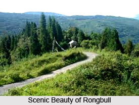 Rongbull, West Bengal