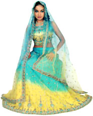 Costumes of Chandigarh Ghagra-choli