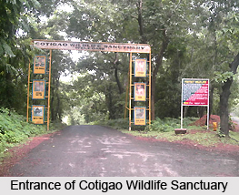 Cotigao Wildlife Sanctuary, Goa
