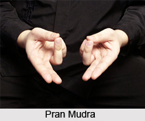 Pran Mudra, Yoga