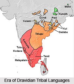 Dravidian Tribal Languages