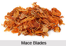 Mace, Indian Spice