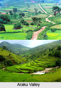 Hill Stations of Andhra Pradesh