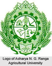 Universities of Andhra Pradesh