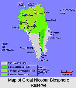 Great Nicobar Biosphere Reserve, Nicobar