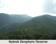 Nokrek Biosphere Reserve, Meghalaya