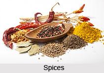 Ingredients of Indian Food