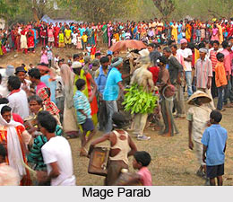 Festivals of Munda Tribe